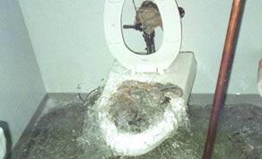 toilet overflowing with sewage