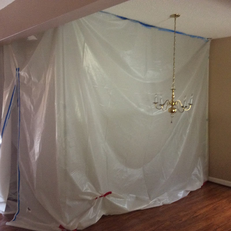 mold removal process